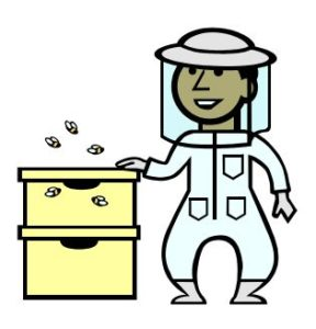 Cover photo for Introduction to Beekeeping Program