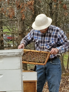 Cover photo for Good Time to Be Inspecting Honeybee Hives!