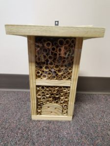 Cover photo for Native Bee Nesting Shelters Near Blooming Redbud Trees