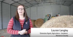 Cover photo for Video: How to Sample Hay Bales for Nutritive Value Analysis